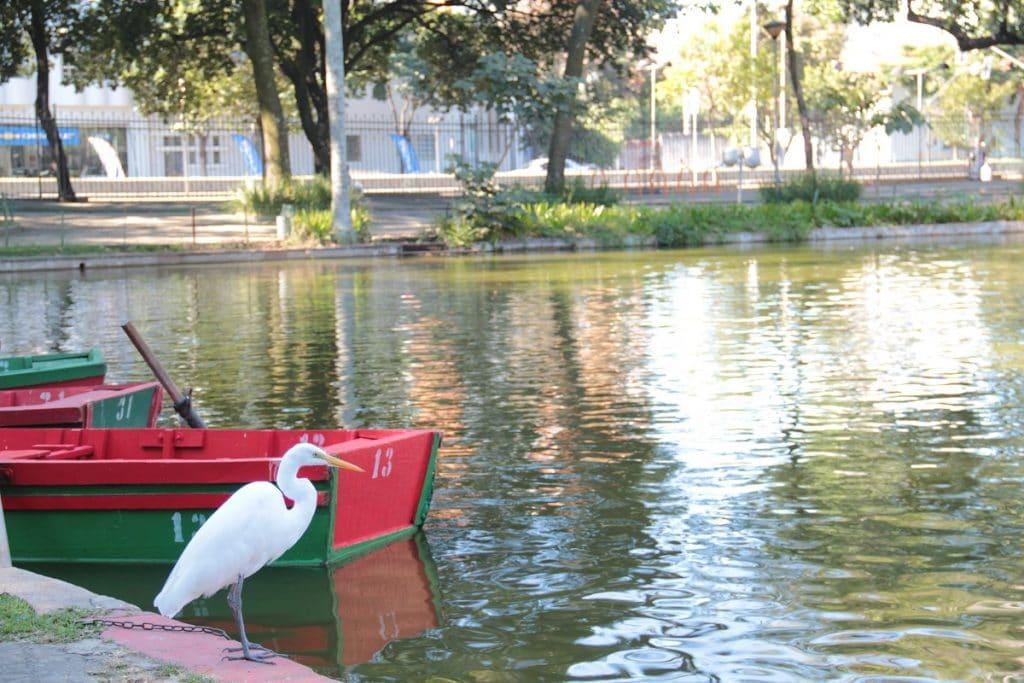 Barquinho do Parque Municipal em Belo Horizonte.