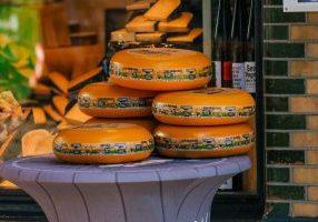 Gouda: queijo típico holandês